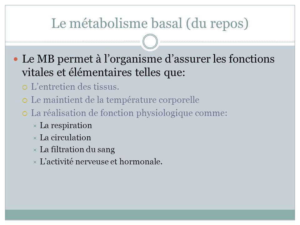 Le métabolisme basal (du repos) Le MB permet à lorganisme dassurer les fonctions vitales et élémentaires telles que: Lentretien des tissus. Le maintie