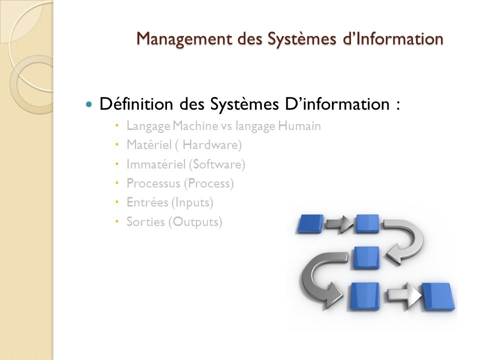 Management des Systèmes dInformation Définition des Systèmes Dinformation : Langage Machine vs langage Humain Matériel ( Hardware) Immatériel (Software) Processus (Process) Entrées (Inputs) Sorties (Outputs)