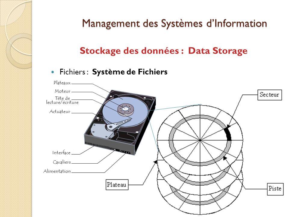Management des Systèmes dInformation Stockage des données : Data Storage Fichiers : Système de Fichiers