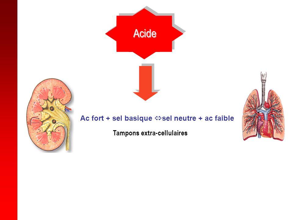 3 systèmes de défense Systèmes tampons (physico-chimique) – Acide faible et sa base conjuguée –Capte un ion H+ ou OH- –Tampons extra-cellulaires (HCO3-/H2CO3) –Tampons intra-cellulaires (osseux..) Poumon (rapide) Rein (lent)