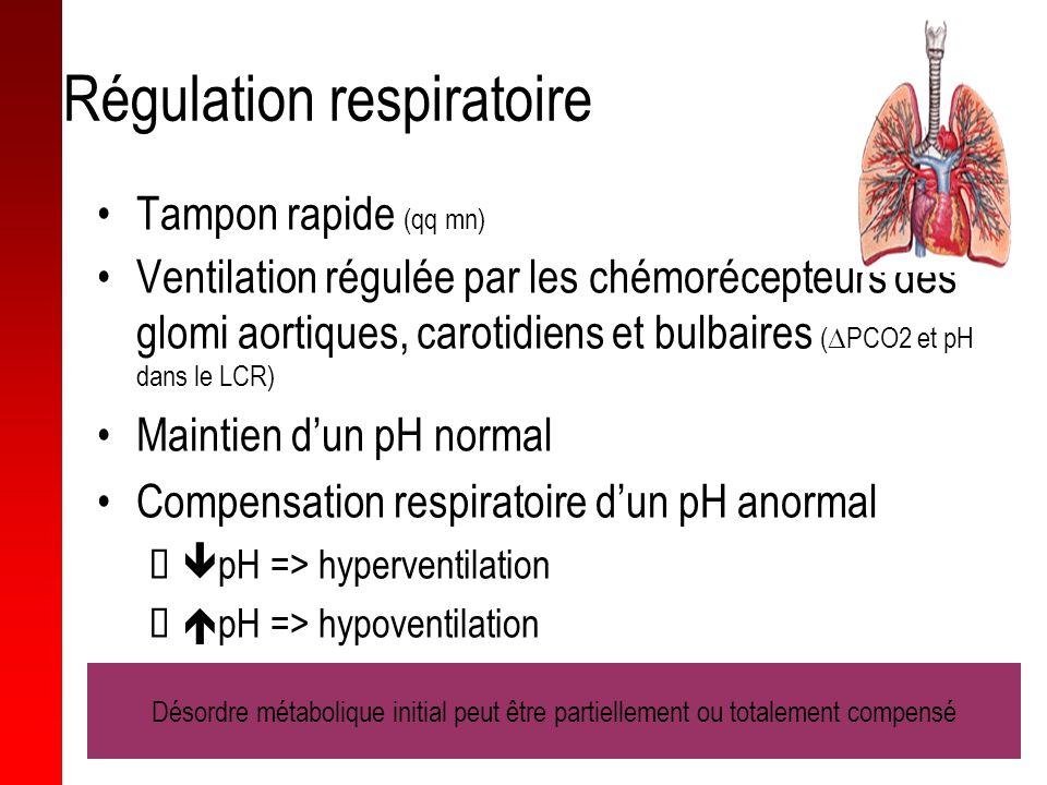 Régulation respiratoire Tampon rapide (qq mn) Ventilation régulée par les chémorécepteurs des glomi aortiques, carotidiens et bulbaires ( PCO2 et pH d