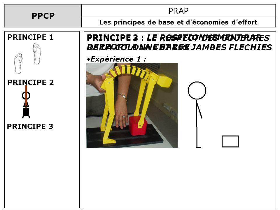 PPCP PRAP Les principes de base et déconomies deffort PRINCIPE 2 : LE POSITIONNEMENT PAR RAPPORT A LA CHARGE PRINCIPE 3 : LE RESPECT DES COUBURES DE L