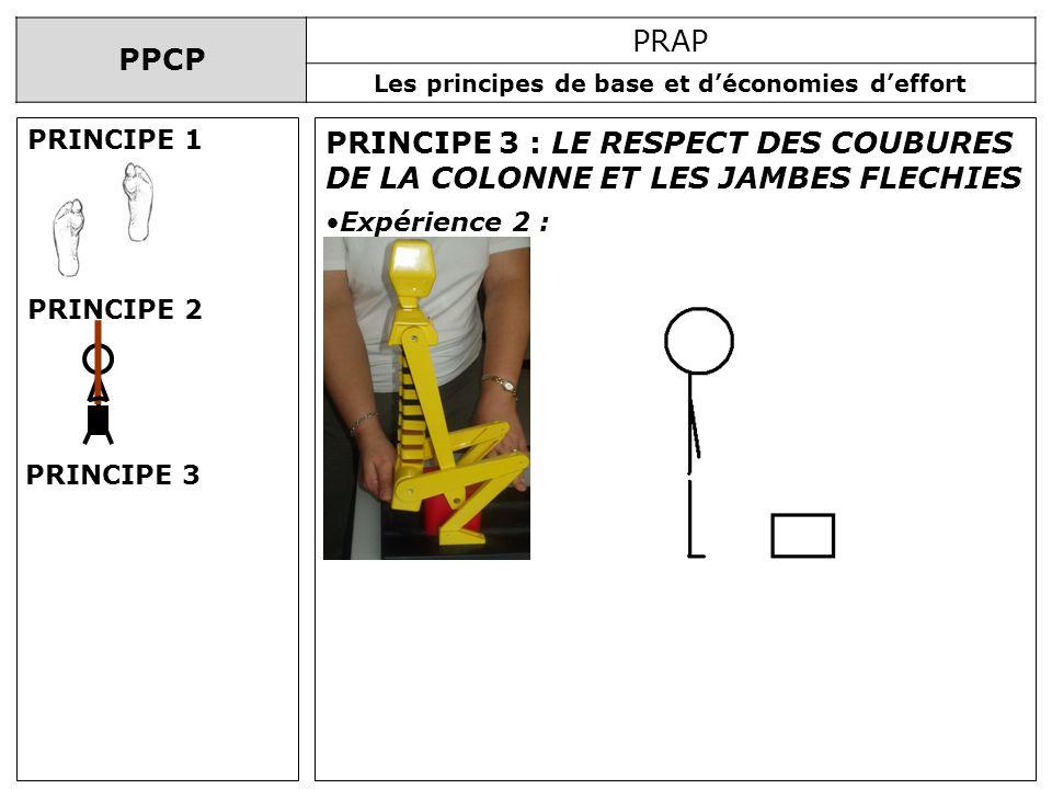 PPCP PRAP Les principes de base et déconomies deffort PRINCIPE 3 : LE RESPECT DES COUBURES DE LA COLONNE ET LES JAMBES FLECHIES Expérience 2 : PRINCIP