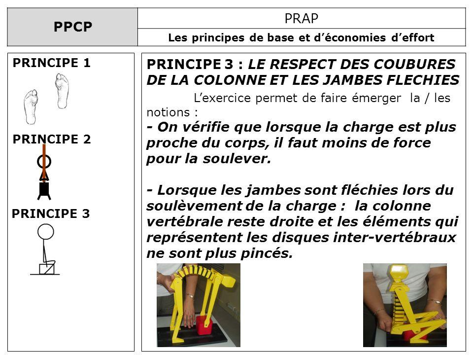 PPCP PRAP Les principes de base et déconomies deffort PRINCIPE 3 : LE RESPECT DES COUBURES DE LA COLONNE ET LES JAMBES FLECHIES Lexercice permet de fa
