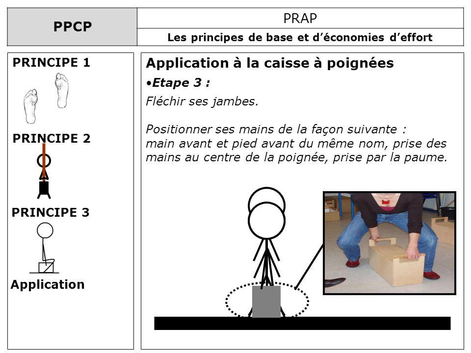 PPCP PRAP Les principes de base et déconomies deffort Application à la caisse à poignées PRINCIPE 1 PRINCIPE 2 PRINCIPE 3 Application Etape 3 : Fléchi
