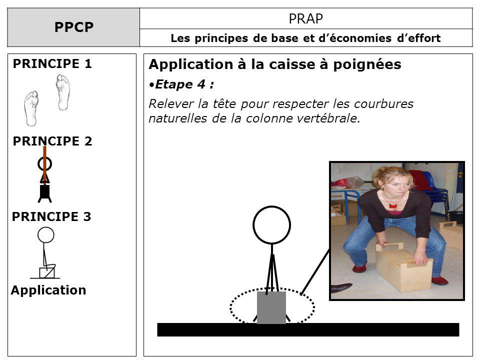 PPCP PRAP Les principes de base et déconomies deffort Application à la caisse à poignées PRINCIPE 1 PRINCIPE 2 PRINCIPE 3 Application Etape 4 : Releve