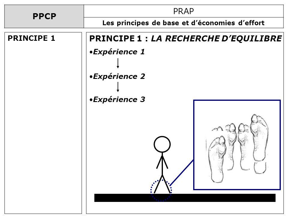 PPCP PRAP Les principes de base et déconomies deffort PRINCIPE 1 : LA RECHERCHE DEQUILIBRE Expérience 3 Expérience 1 Expérience 2 PRINCIPE 1