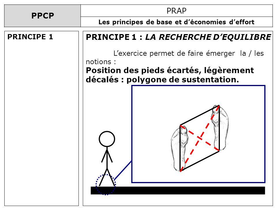 PPCP PRAP Les principes de base et déconomies deffort PRINCIPE 1 : LA RECHERCHE DEQUILIBRE Lexercice permet de faire émerger la / les notions : Positi