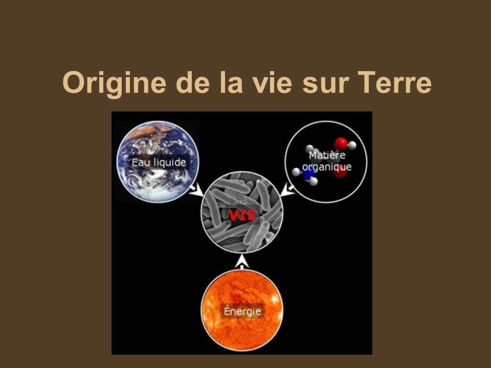 Origine de la vie sur Terre