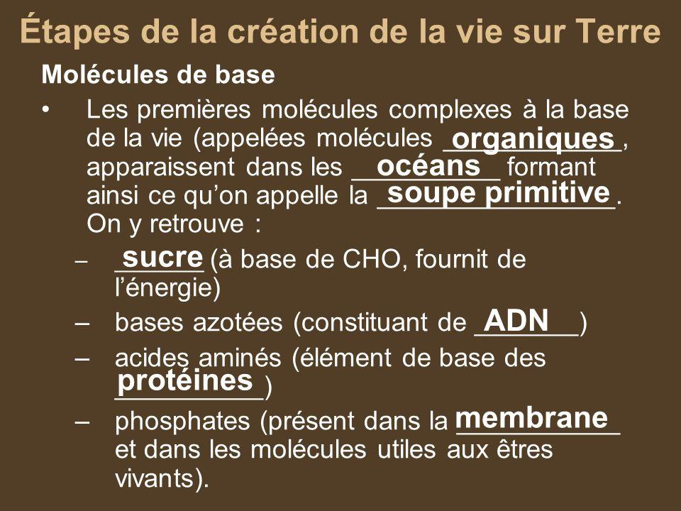 Molécules de base Les premières molécules complexes à la base de la vie (appelées molécules ____________, apparaissent dans les __________ formant ain