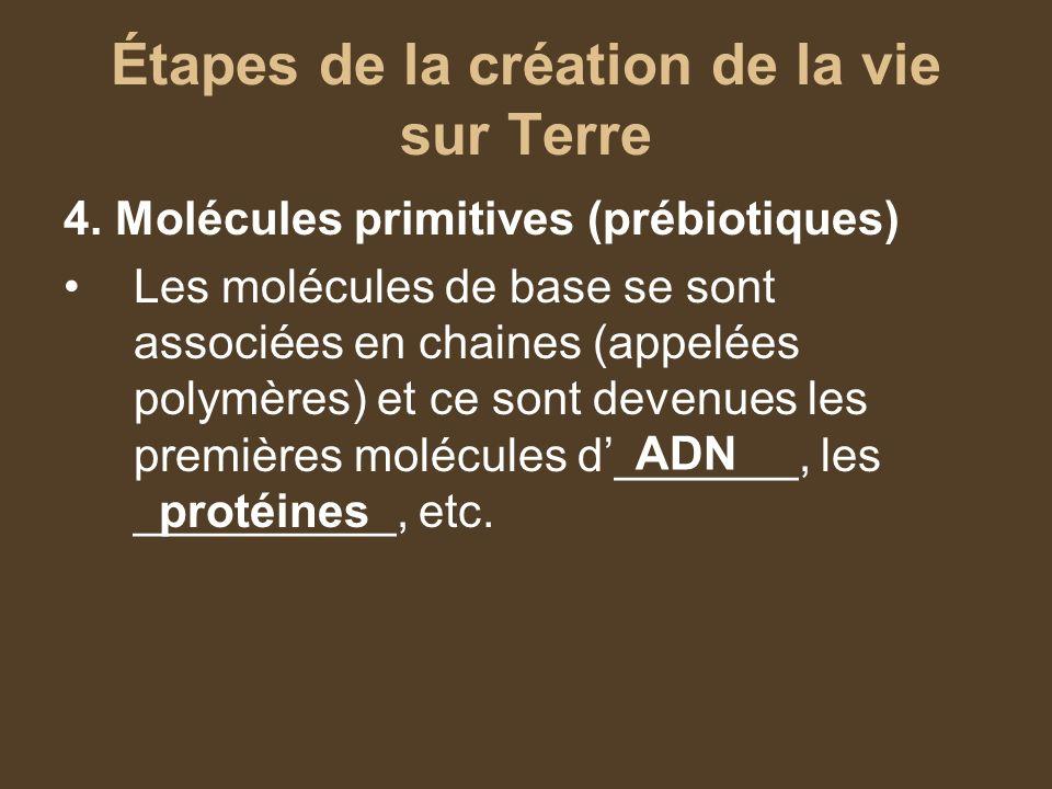 Étapes de la création de la vie sur Terre 4. Molécules primitives (prébiotiques) Les molécules de base se sont associées en chaines (appelées polymère