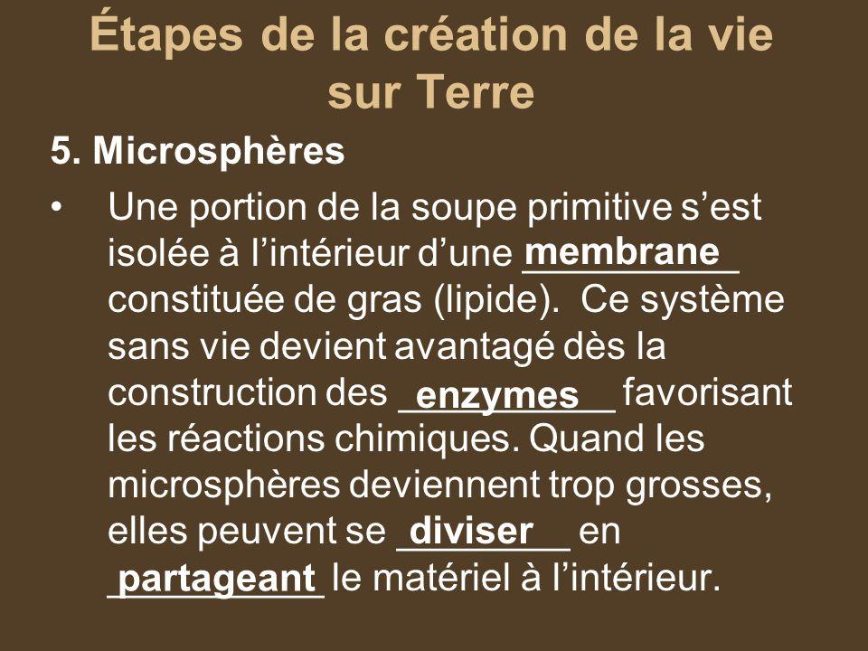 Étapes de la création de la vie sur Terre 5. Microsphères Une portion de la soupe primitive sest isolée à lintérieur dune __________ constituée de gra