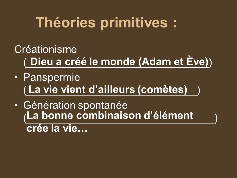 Théories primitives : Créationisme (_______________________________) Panspermie (_____________________________) Génération spontanée (________________
