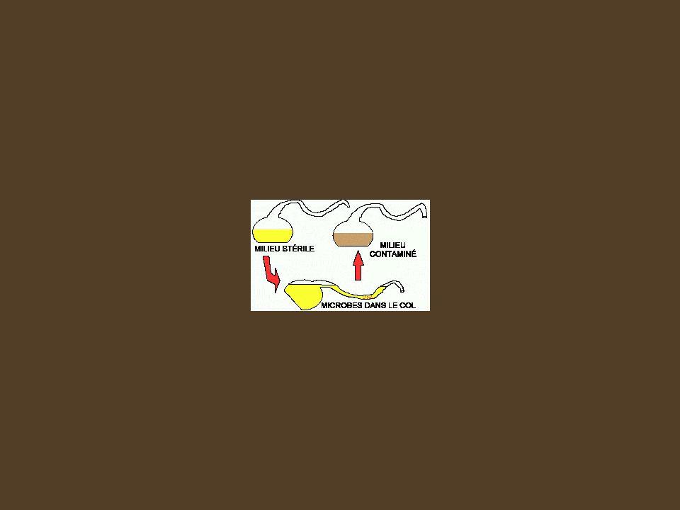 Expériences menant à labolition de la théorie de la génération spontanée Redi : Les mouches ne se développent dans la viande si _________________ _______________ Pasteur : Les microorganismes ne se développent pas dans un bouillon stérile si _______________________________.