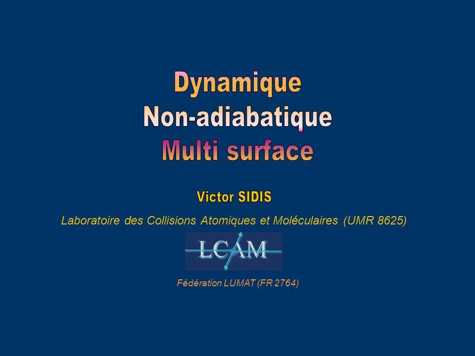 Laboratoire des Collisions Atomiques et Moléculaires (UMR 8625) LUMAT (FR 2764)