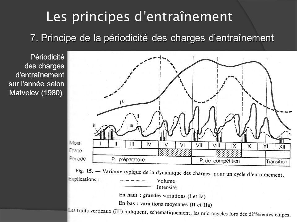 Les principes dentraînement 7. Principe de la périodicité des charges dentraînement Lentraînement doit être organisé de façon raisonnée et structurée
