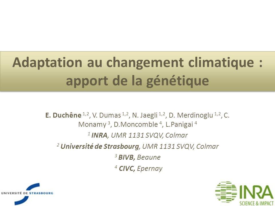 Adaptation au changement climatique : apport de la génétique E. Duchêne 1,2, V. Dumas 1,2, N. Jaegli 1,2, D. Merdinoglu 1,2, C. Monamy 3, D.Moncombl