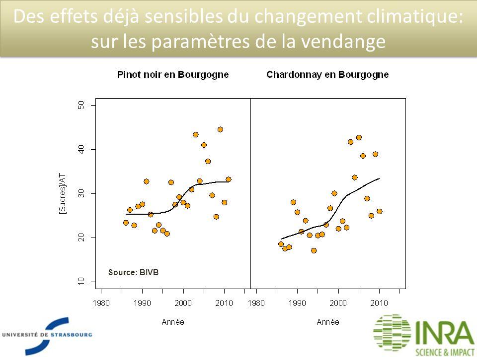 Des effets déjà sensibles du changement climatique: sur les paramètres de la vendange Source: BIVB