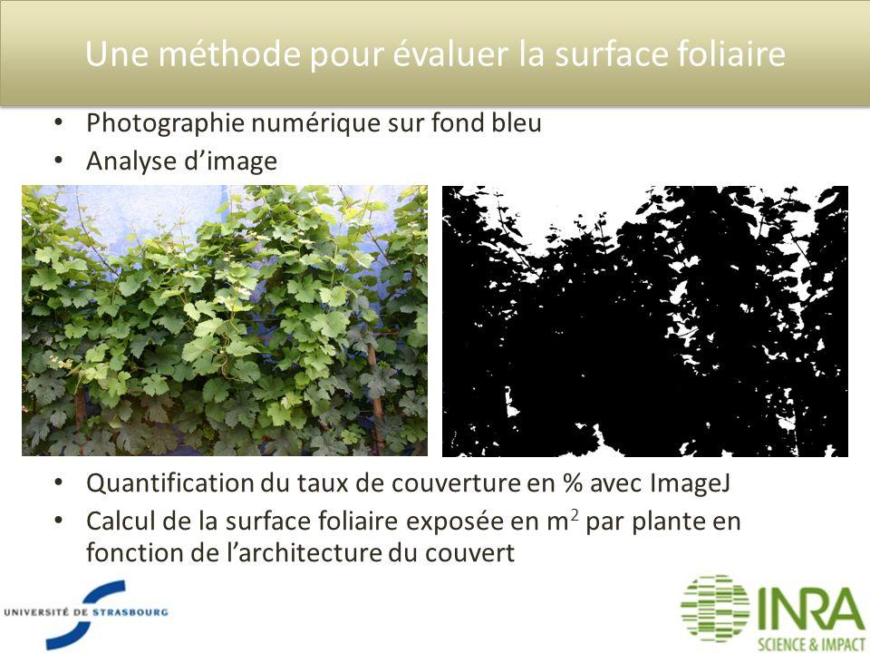 Une méthode pour évaluer la surface foliaire Quantification du taux de couverture en % avec ImageJ Calcul de la surface foliaire exposée en m 2 par pl