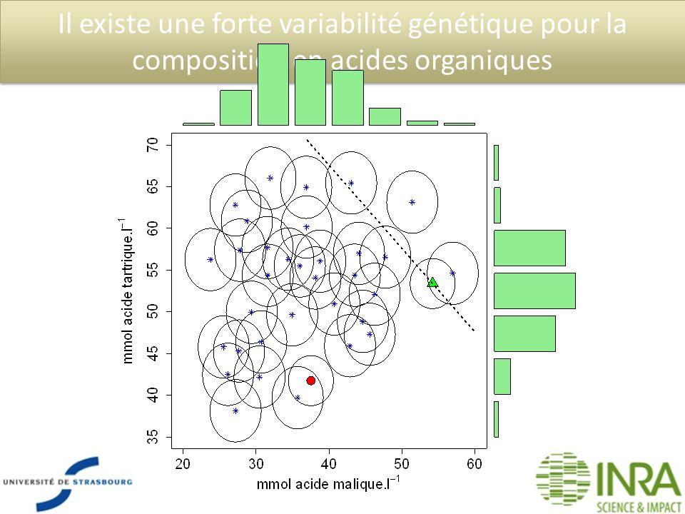 Il existe une forte variabilité génétique pour la composition en acides organiques