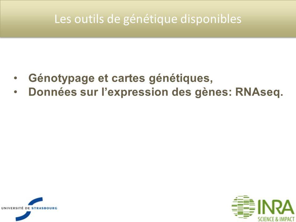 Les outils de génétique disponibles Génotypage et cartes génétiques, Données sur lexpression des gènes: RNAseq.