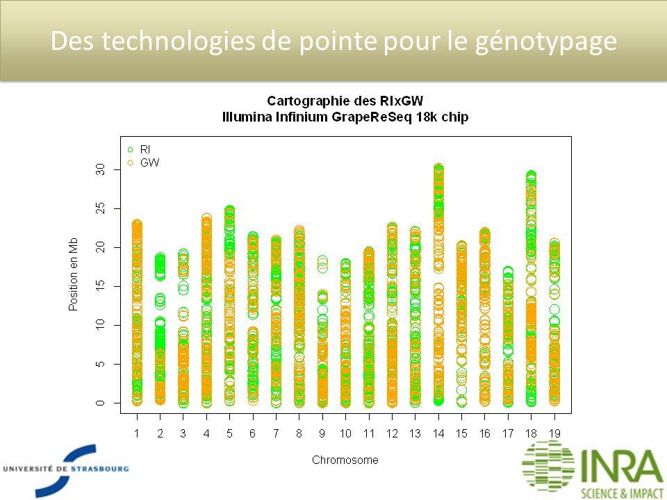 Des technologies de pointe pour le génotypage