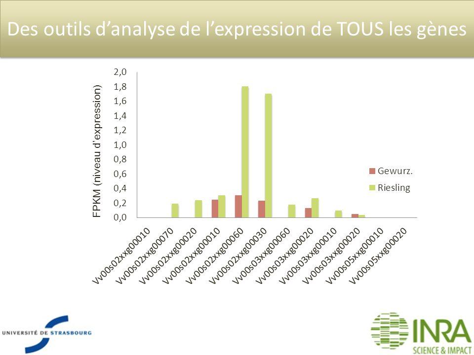 Des outils danalyse de lexpression de TOUS les gènes FPKM (niveau dexpression)