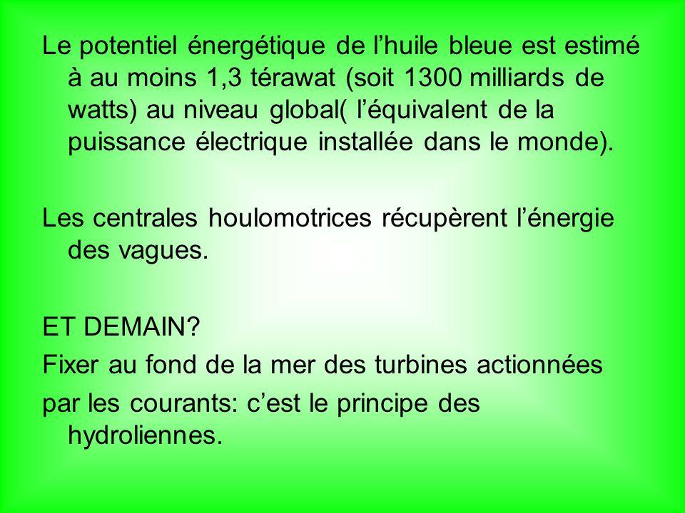 Le potentiel énergétique de lhuile bleue est estimé à au moins 1,3 térawat (soit 1300 milliards de watts) au niveau global( léquivalent de la puissance électrique installée dans le monde).