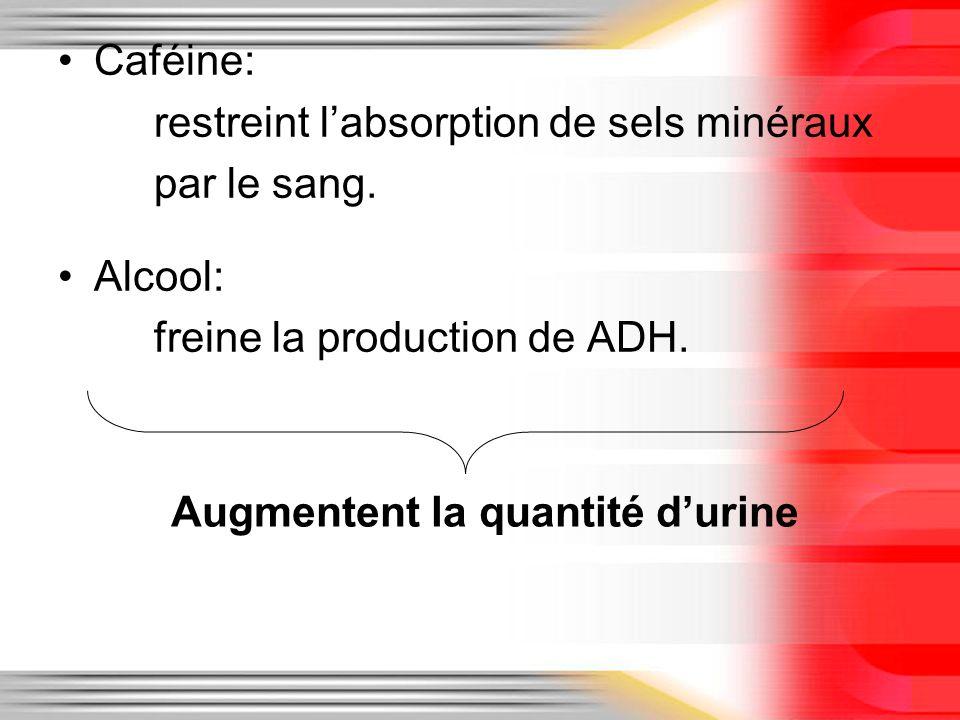 Caféine: restreint labsorption de sels minéraux par le sang. Alcool: freine la production de ADH. Augmentent la quantité durine