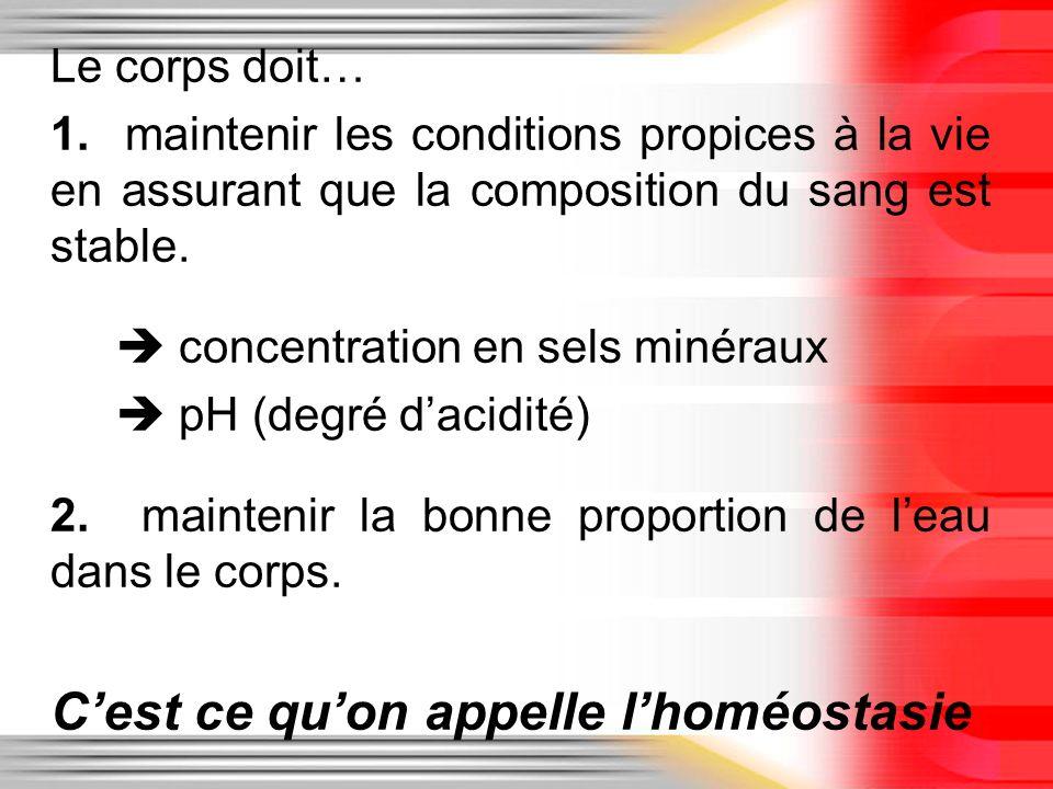 Le corps doit… 1. maintenir les conditions propices à la vie en assurant que la composition du sang est stable. concentration en sels minéraux pH (deg