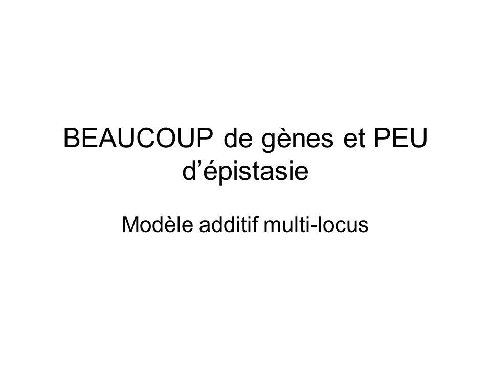BEAUCOUP de gènes et PEU dépistasie Modèle additif multi-locus