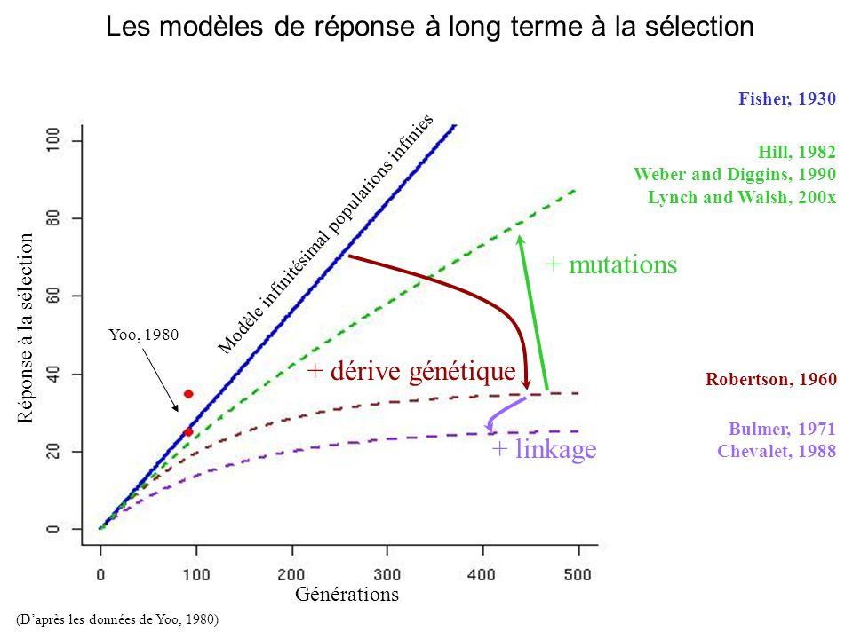 + dérive génétique + mutations + linkage Yoo, 1980 (Daprès les données de Yoo, 1980) Générations Réponse à la sélection Les modèles de réponse à long terme à la sélection Modèle infinitésimal populations infinies Fisher, 1930 Robertson, 1960 Hill, 1982 Weber and Diggins, 1990 Lynch and Walsh, 200x Bulmer, 1971 Chevalet, 1988