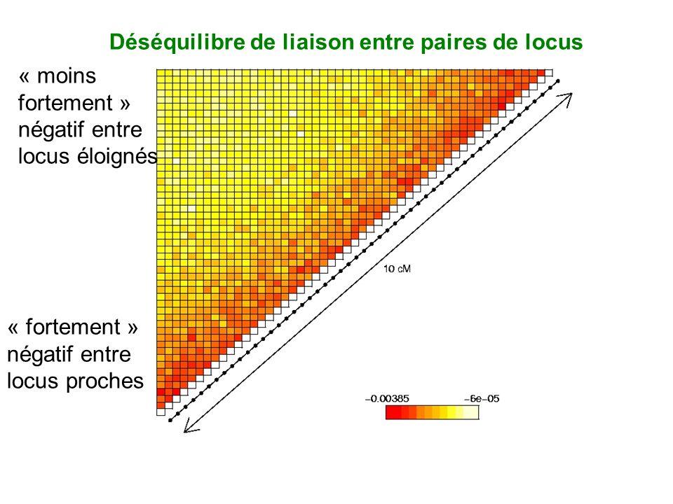 Déséquilibre de liaison entre paires de locus « fortement » négatif entre locus proches « moins fortement » négatif entre locus éloignés