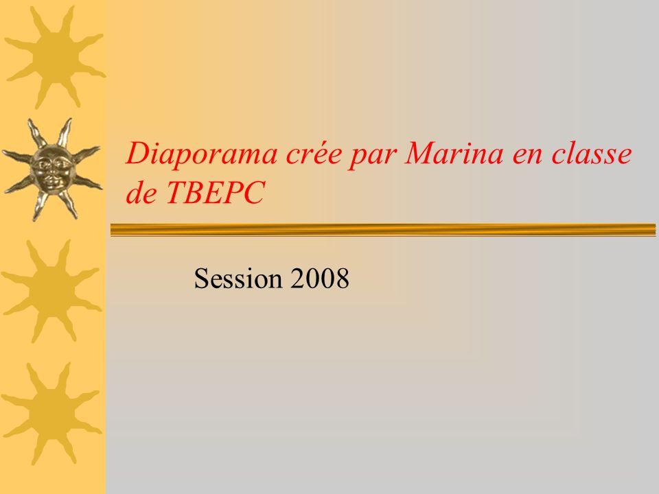 Diaporama crée par Marina en classe de TBEPC Session 2008