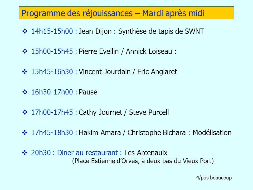 4/pas beaucoup Programme des réjouissances – Mardi après midi 14h15-15h00 : Jean Dijon : Synthèse de tapis de SWNT 15h00-15h45 : Pierre Evellin / Anni