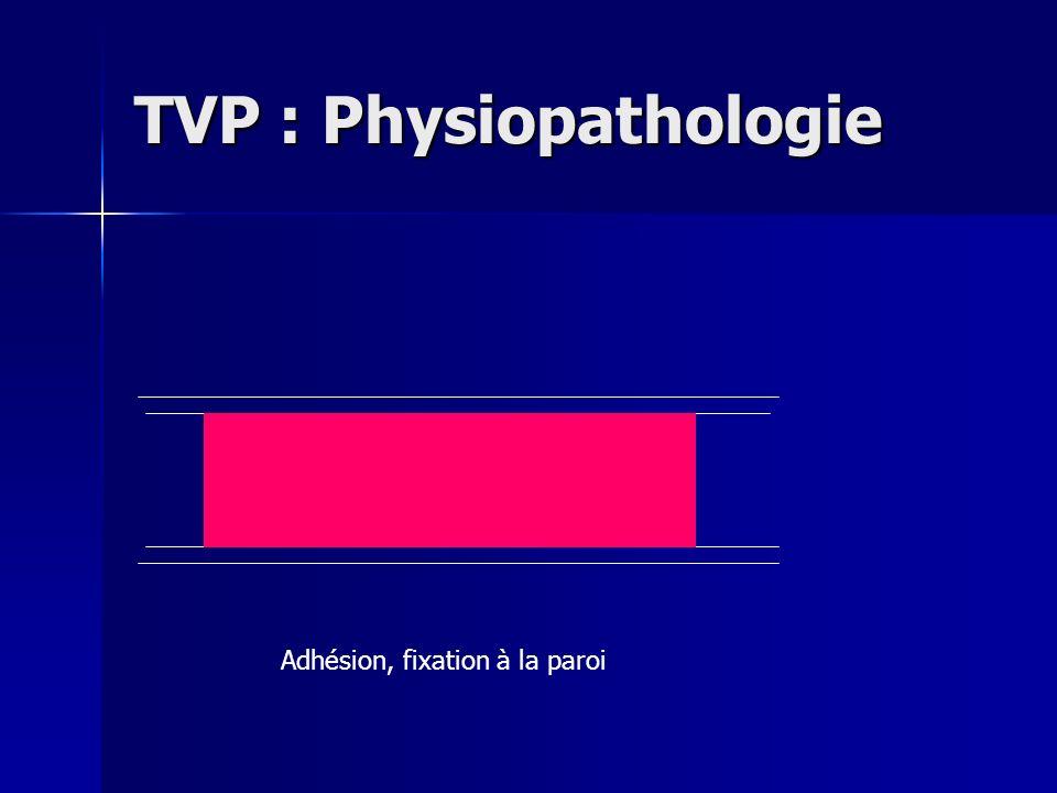 TVP : Physiopathologie Adhésion, fixation à la paroi