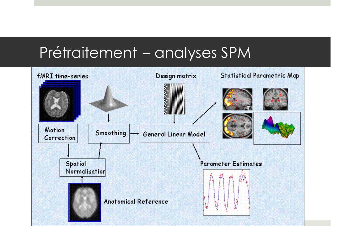 Prétraitement – analyses SPM