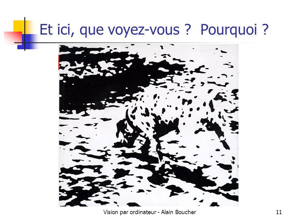 Vision par ordinateur - Alain Boucher11 Et ici, que voyez-vous ? Pourquoi ?