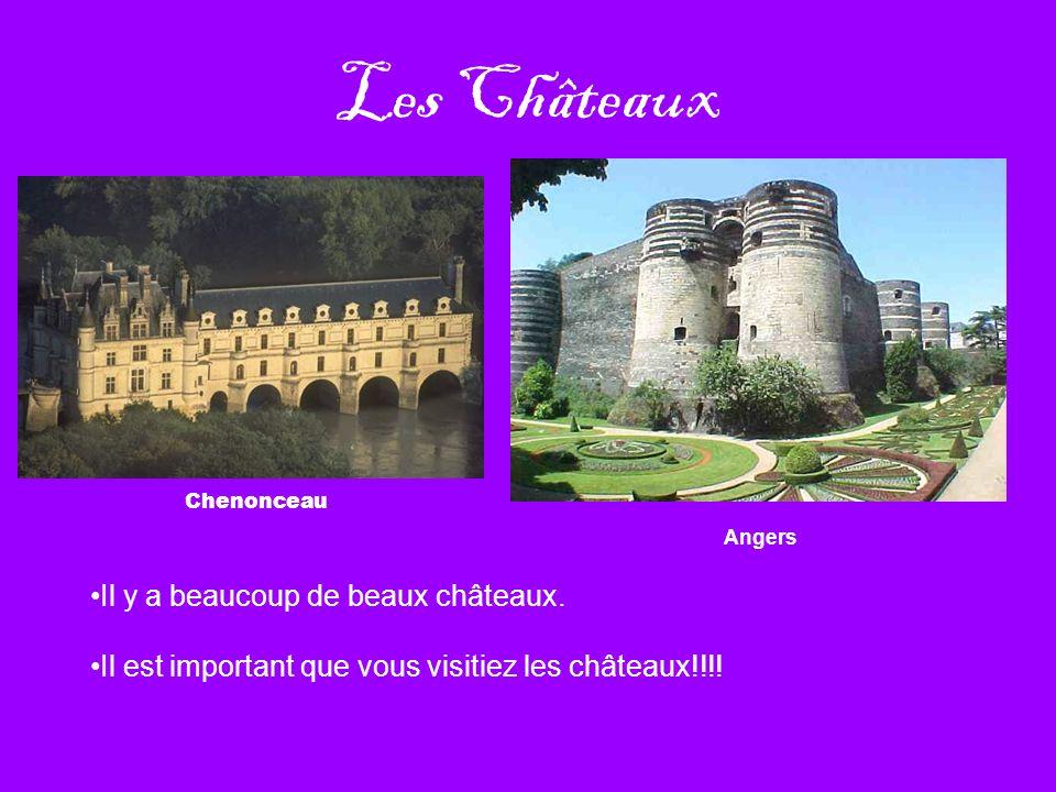 Les Châteaux Chenonceau Il y a beaucoup de beaux châteaux. Il est important que vous visitiez les châteaux!!!! Angers
