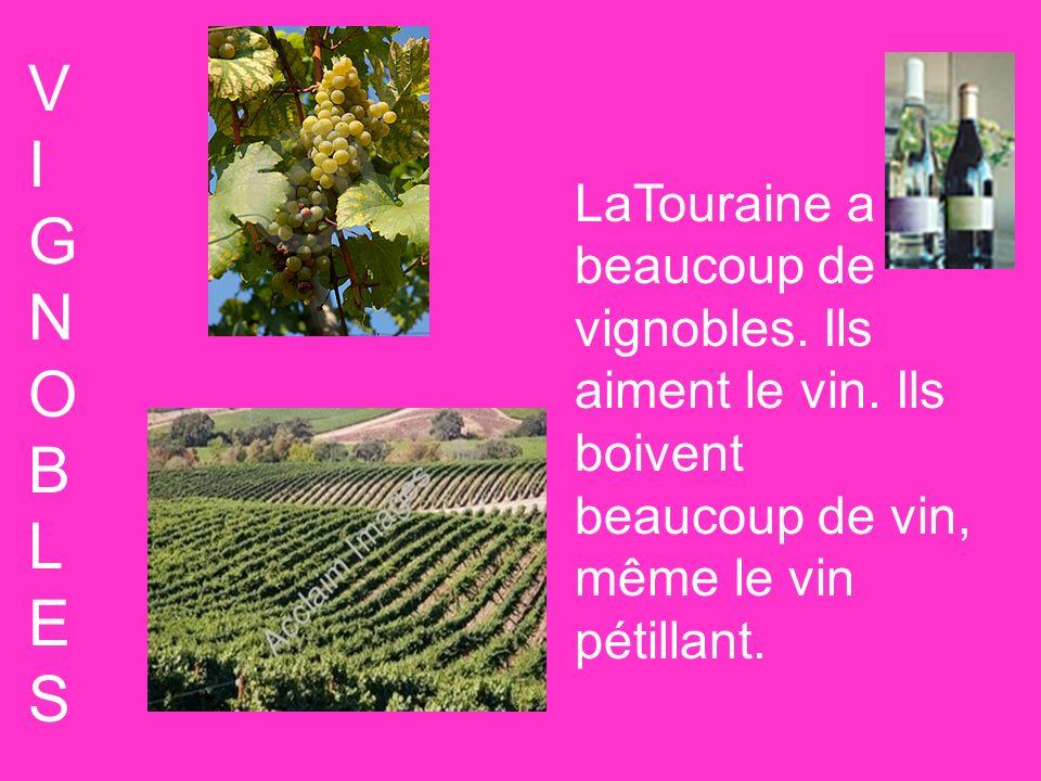 VIGNOBLESVIGNOBLES LaTouraine a beaucoup de vignobles. Ils aiment le vin. Ils boivent beaucoup de vin, même le vin pétillant.