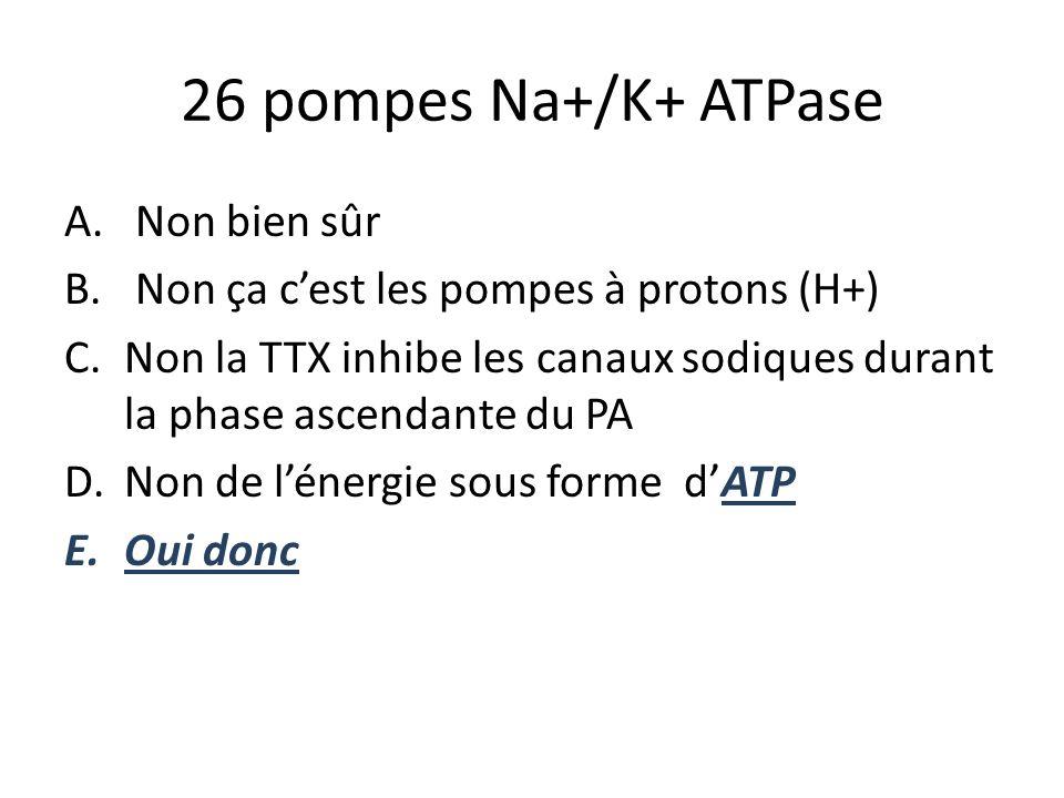 26 pompes Na+/K+ ATPase A. Non bien sûr B. Non ça cest les pompes à protons (H+) C.Non la TTX inhibe les canaux sodiques durant la phase ascendante du
