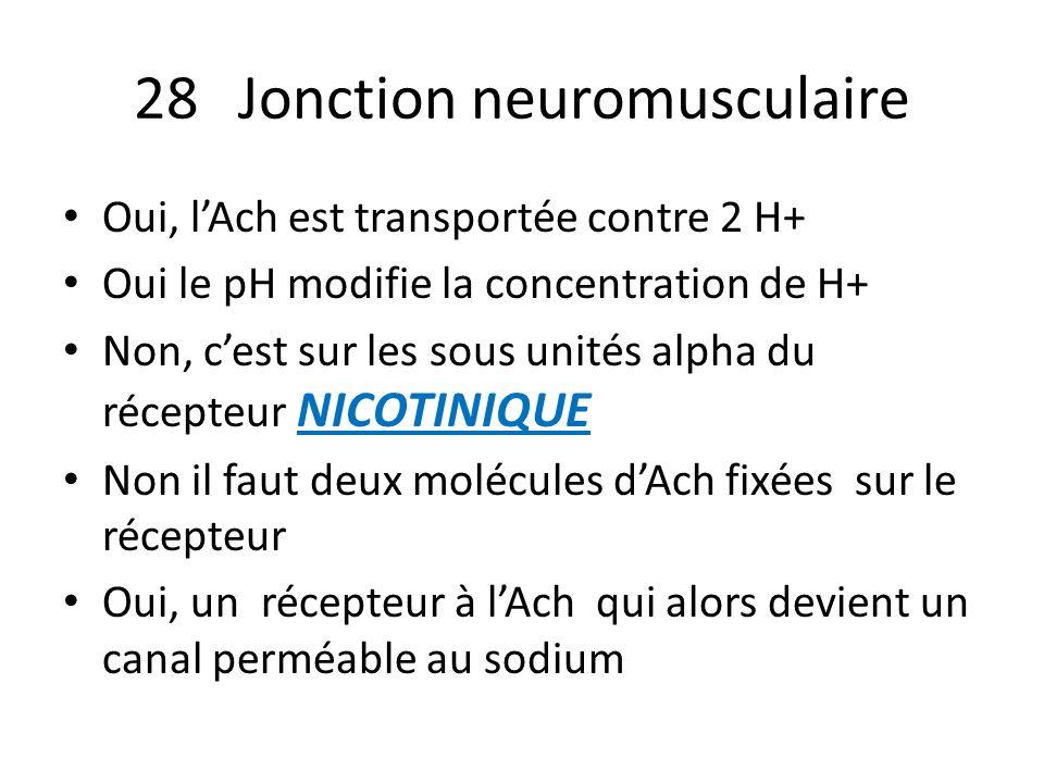 28 Jonction neuromusculaire Oui, lAch est transportée contre 2 H+ Oui le pH modifie la concentration de H+ Non, cest sur les sous unités alpha du réce