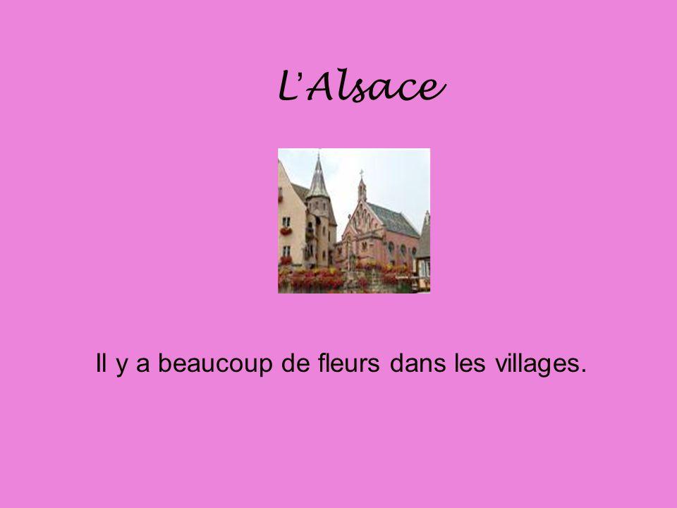 LAlsace LAlsace a un climat continental. Il fait très froid en hiver et il fait chaud en été.