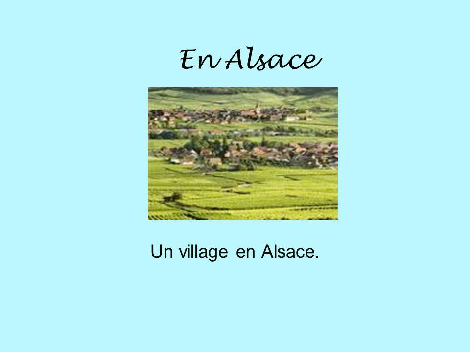LAlsace Il y a beaucoup de fleurs dans les villages.