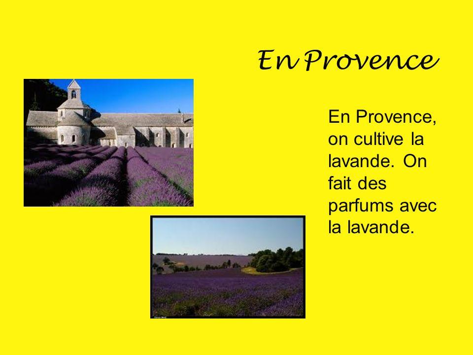 La Provence Voici le Pont du Gard en Provence. Cest un immense aqueduc construit par les romains.