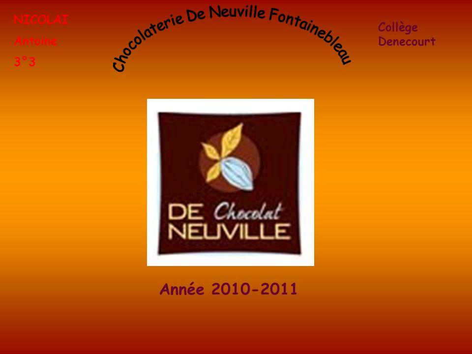 NICOLAI Antoine 3°3 Collège Denecourt Année 2010-2011