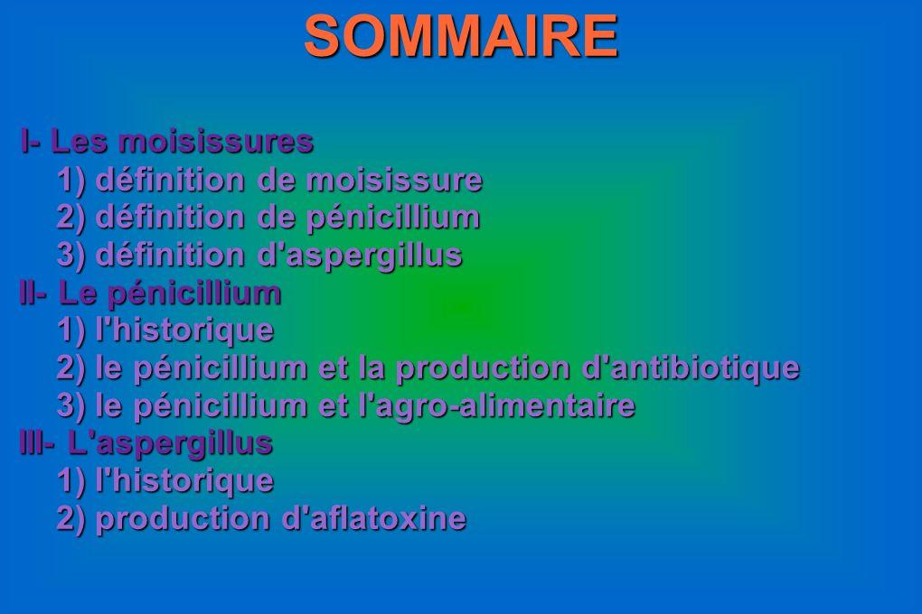 SOMMAIRE I- Les moisissures I- Les moisissures 1) définition de moisissure 1) définition de moisissure 2) définition de pénicillium 2) définition de p