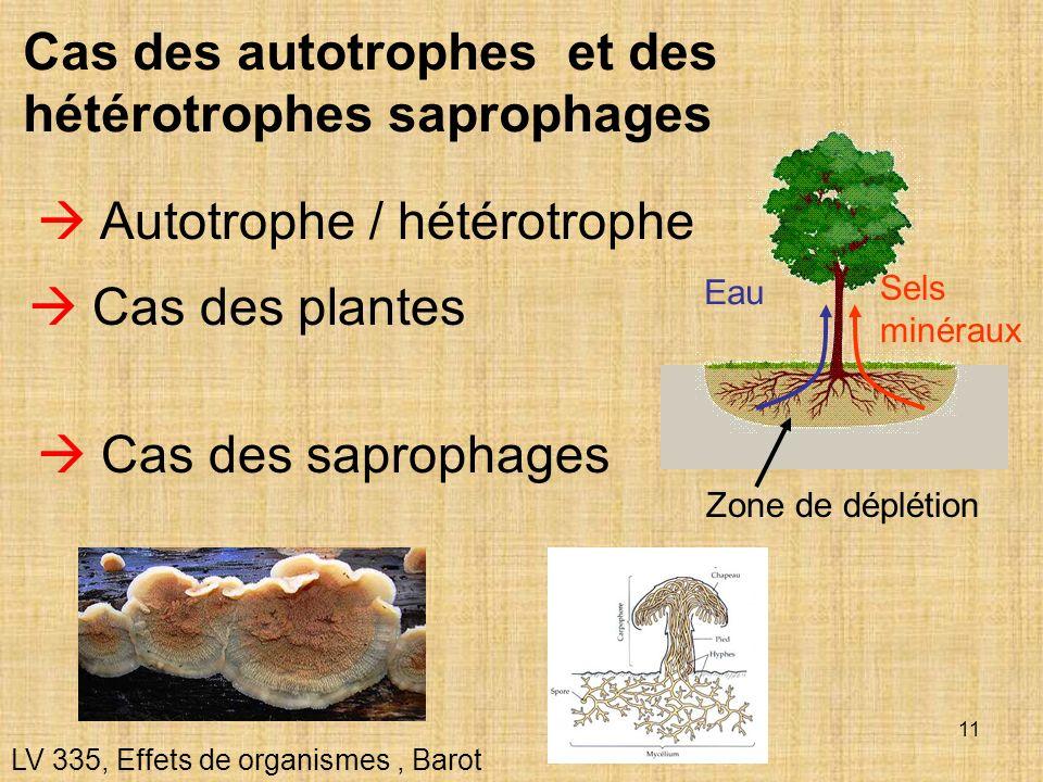11 Autotrophe / hétérotrophe Cas des plantes Cas des autotrophes et des hétérotrophes saprophages LV 335, Effets de organismes, Barot Cas des sapropha