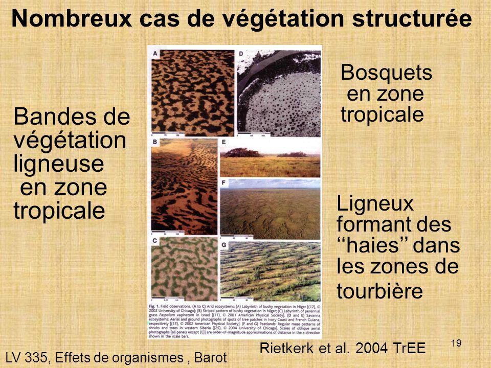 19 Nombreux cas de végétation structurée LV 335, Effets de organismes, Barot Bandes de végétation ligneuse en zone tropicale Bosquets en zone tropical