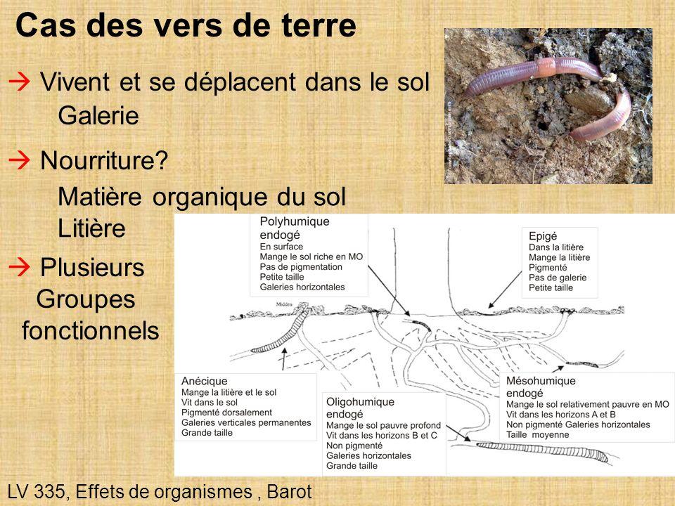 25 Cas des vers de terre LV 335, Effets de organismes, Barot Vivent et se déplacent dans le sol Nourriture? Matière organique du sol Litière Galerie P